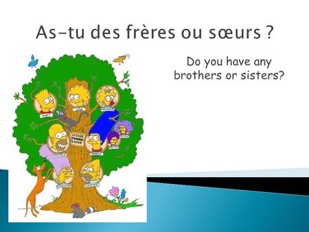 As-tu des frères ou sœurs ? Do you have any brothers or sisters?