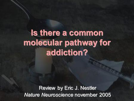 Is there a common molecular pathway for addiction?