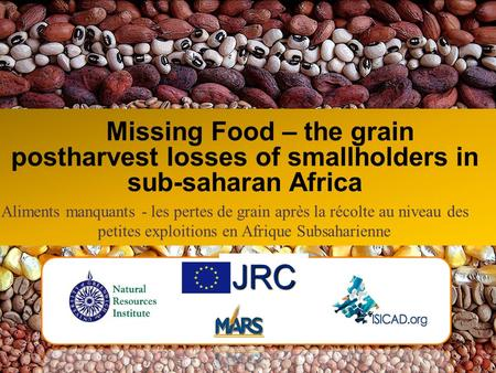 Missing Food – the grain postharvest losses of smallholders in sub-saharan Africa JRC Aliments manquants - les pertes de grain après la récolte au niveau.