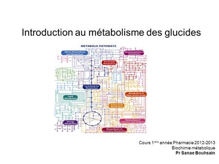 Introduction au métabolisme des glucides