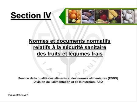 Section IV Normes et documents normatifs