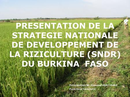 PRESENTATION DE LA STRATEGIE NATIONALE DE DEVELOPPEMENT DE LA RIZICULTURE (SNDR) DU BURKINA FASO Présentation: Mr Youssouf OUATTRARA Point focal Task.