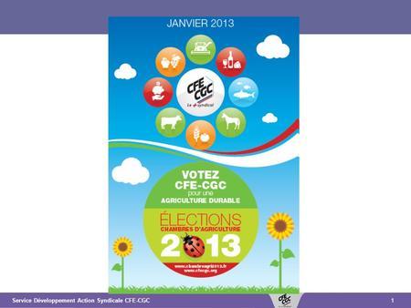 Paris le 15 novembre 2011 comite de pilotage elections for Chambre agriculture 13 cfe