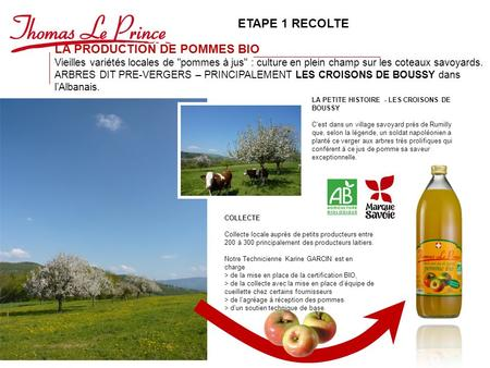 LA PRODUCTION DE POMMES BIO