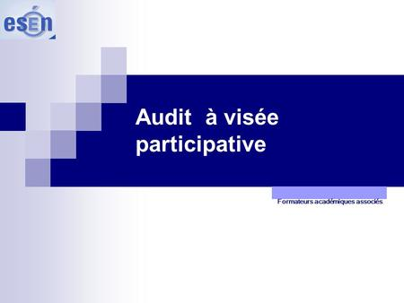 Audit à visée participative