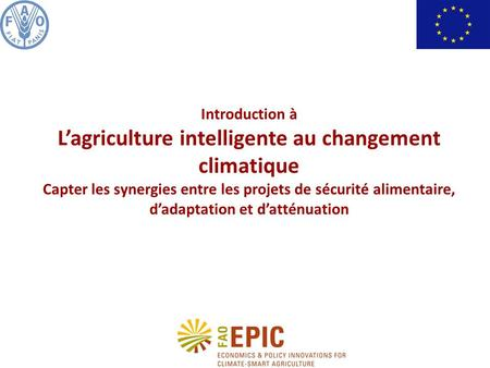 Introduction à Lagriculture intelligente au changement climatique Capter les synergies entre les projets de sécurité alimentaire, dadaptation et datténuation.
