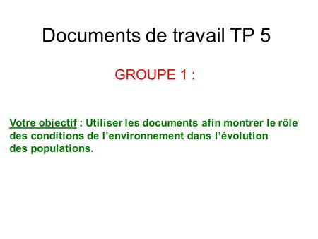 Documents de travail TP 5