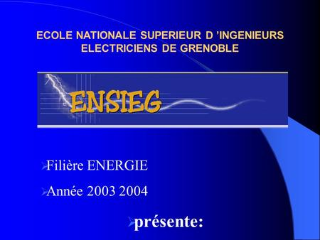 ECOLE NATIONALE SUPERIEUR D 'INGENIEURS ELECTRICIENS DE GRENOBLE