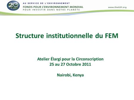 Structure institutionnelle du FEM Atelier Élargi pour la Circonscription 25 au 27 Octobre 2011 Nairobi, Kenya.