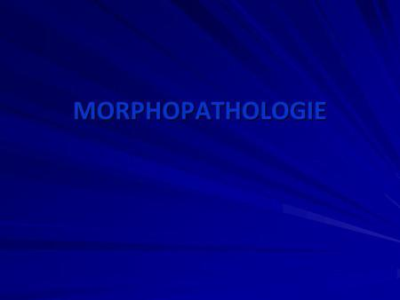 MORPHOPATHOLOGIE.