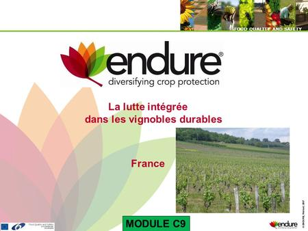 © ENDURE, February 2007 FOOD QUALITY AND SAFETY © ENDURE, February 2007 FOOD QUALITY AND SAFETY La lutte intégrée dans les vignobles durables France MODULE.