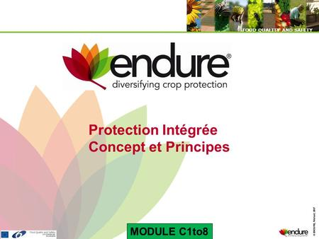 © ENDURE, February 2007 FOOD QUALITY AND SAFETY © ENDURE, February 2007 FOOD QUALITY AND SAFETY Protection Intégrée Concept et Principes MODULE C1to8.