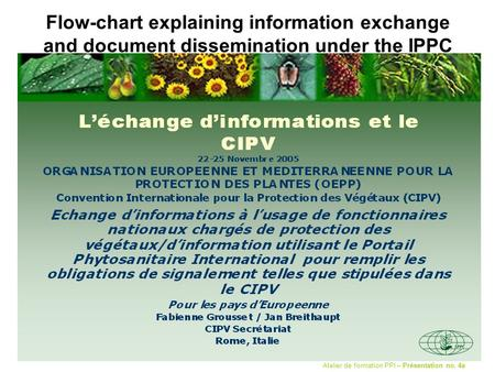 Flow-chart explaining information exchange and document dissemination under the IPPC Atelier de formation PPI – Présentation no. 4a.