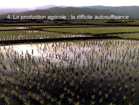 4. La production agricole : la difficile autosuffisance.