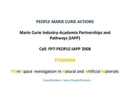 PEOPLE MARIE CURIE ACTIONS Marie Curie Industry-Academia Partnerships and Pathways (IAPP) Call: FP7-PEOPLE-IAPP 2008 POSINAM POre Space Investigation in.