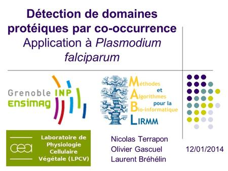 Détection de domaines protéiques par co-occurrence Application à Plasmodium falciparum Nicolas Terrapon Olivier Gascuel 12/01/2014 Laurent Bréhélin.