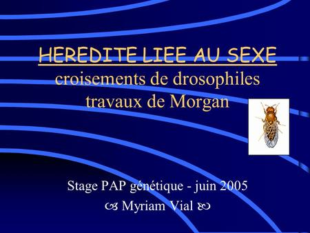 HEREDITE LIEE AU SEXE croisements de drosophiles travaux de Morgan