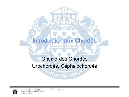 Introduction aux Chordés