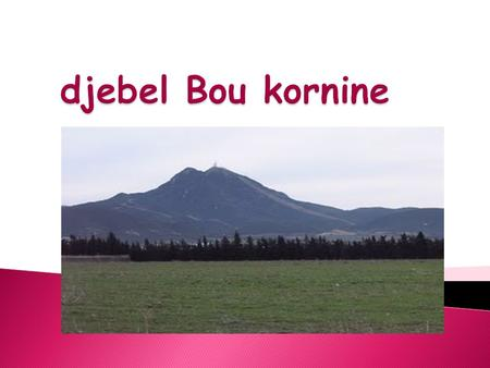 Djebel Bou kornine.