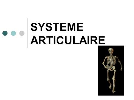 SYSTEME ARTICULAIRE.