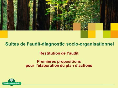 Suites de l'audit-diagnostic socio-organisationnel Restitution de l'audit Premières propositions pour l'élaboration du plan d'actions.
