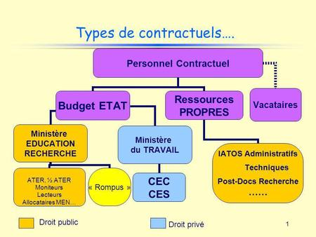 Types de contractuels….