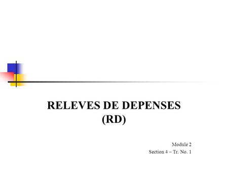 RELEVES DE DEPENSES (RD) Module 2 Section 4 – Tr. No. 1
