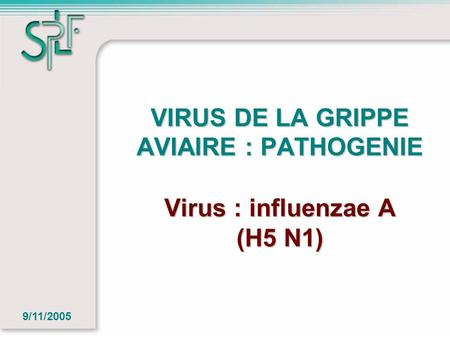 VIRUS DE LA GRIPPE AVIAIRE : PATHOGENIE Virus : influenzae A (H5 N1) 9/11/2005.
