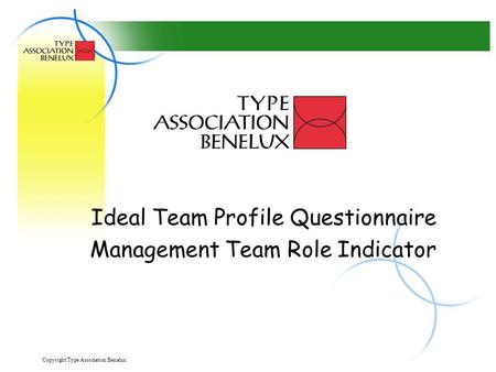 Ideal Team Profile Questionnaire Management Team Role Indicator
