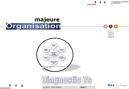 B Diagnostic 7s majeure (c) Prof. Merlier Organisation