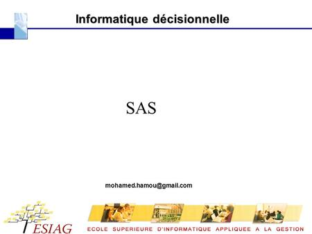 Informatique décisionnelle SAS