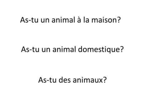 As-tu un animal à la maison? As-tu un animal domestique? As-tu des animaux?