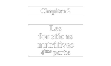 4. La respiration. 4.1. Anatomie. 4.2. Mécanique ventilatoire. 4.3. Alimentation en O 2. 4.3.1. Concentrations sanguines. 4.3.2. L'hémoglobine. 4.4. Elimination.
