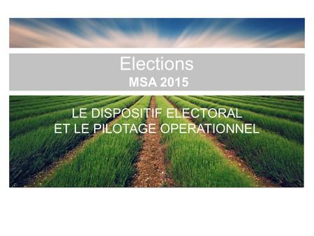 Elections MSA 2015 LE DISPOSITIF ELECTORAL ET LE PILOTAGE OPERATIONNEL.