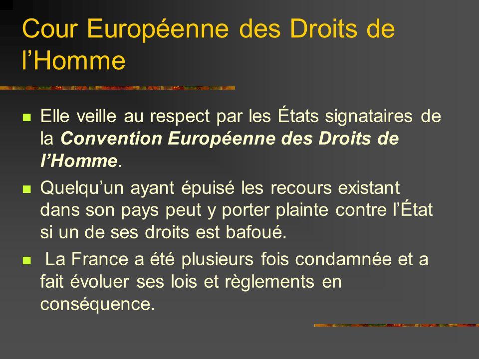 Cour européenne des droits de lHomme Ne pas la confondre avec la cour de lUnion: Cour de Justice des Communautés Européennes qui deviendrait Cour Européenne de Justice selon le traité soumis au référendum