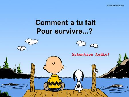 Comment a tu fait Comment a tu fait Pour survivre...? Attention Audio!