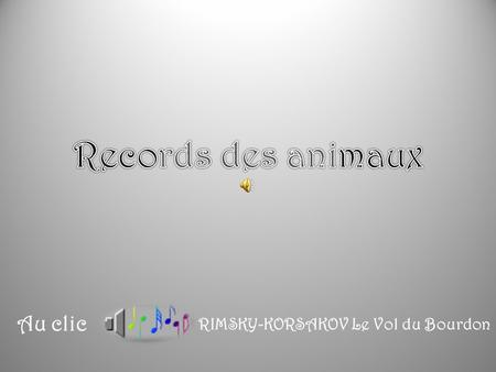 Records des animaux Au clic RIMSKY-KORSAKOV Le Vol du Bourdon.