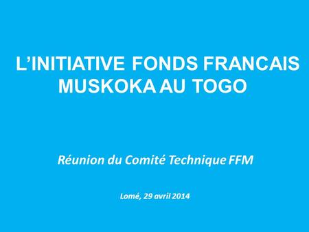 L'INITIATIVE FONDS FRANCAIS MUSKOKA AU TOGO Réunion du Comité Technique FFM Lomé, 29 avril 2014.