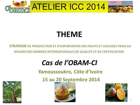 THEME STRATEGIE DE PRODUCTION ET D'EXPORTATION DES FRUITS ET LEGUMES FRAIS AU REGARD DES NORMES INTERNATIONALES DE QUALITE ET DE CERTIFICATION Cas de l'OBAM-CI.
