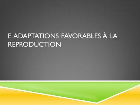 E. adaptations favorables à la reproduction