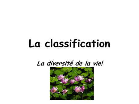 La classification La diversité de la vie!.
