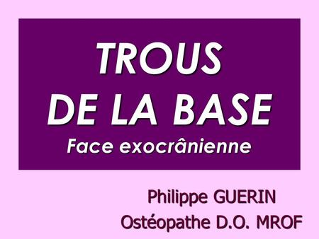 TROUS DE LA BASE Face exocrânienne