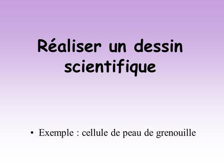 Réaliser un dessin scientifique