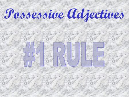 Possessive Adjectives. Possession What matters is what is possessed. Possessive adjectives must agree with the gender of the object, NOT the owner.