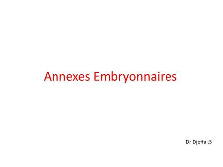Annexes Embryonnaires
