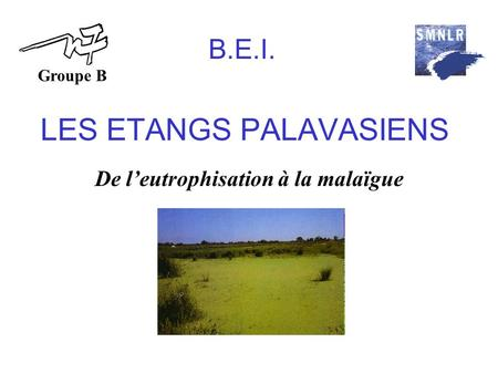 LES ETANGS PALAVASIENS