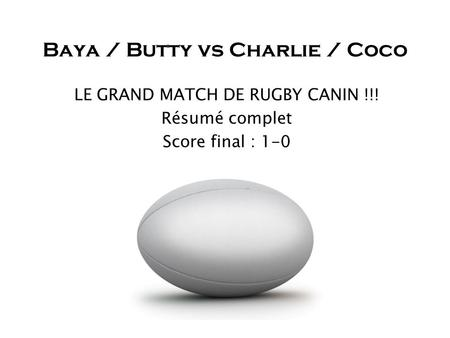 Baya / Butty vs Charlie / Coco LE GRAND MATCH DE RUGBY CANIN !!! Résumé complet Score final : 1-0.