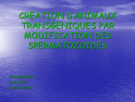 CREATION D'ANIMAUX TRANSGENIQUES PAR MODIFICATION DES SPERMATOZOIDES