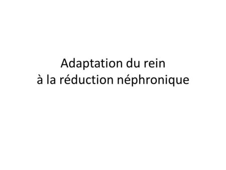 Adaptation du rein à la réduction néphronique