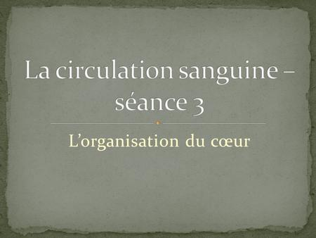La circulation sanguine – séance 3
